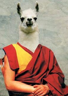 Dalai Llama funny religious pun picture