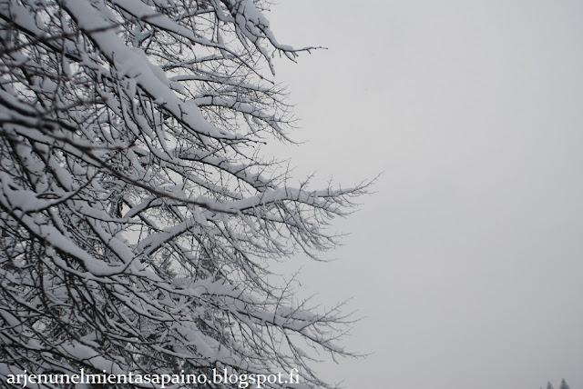 talvi, Kuopio, lääkis, opiskelu