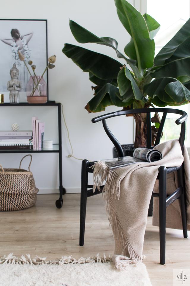 sisustus, olohuone, y-tuoli, banaanipuu