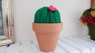 cactus casa crochet amigurumi