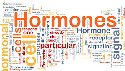 5 Signs of Hormonal Imbalance