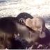 Macaco adora o seu pequeno amigo cãozinho e fica toda a hora dando-lhe abraços e mimos