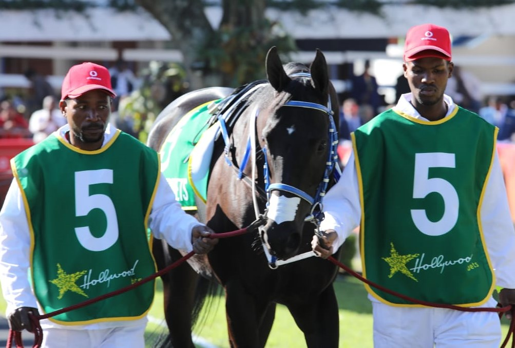 Grooms Initiative and Coloured Saddle Cloths - Hollywoodbets Greyville - Horse Racing