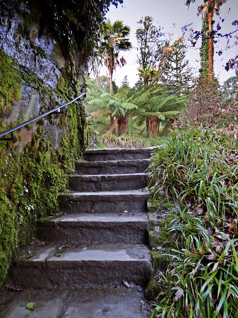 Garden steps at Trelissick House, Cornwall