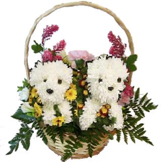 Gifs De Flores Con Movimiento Gifs De Amor