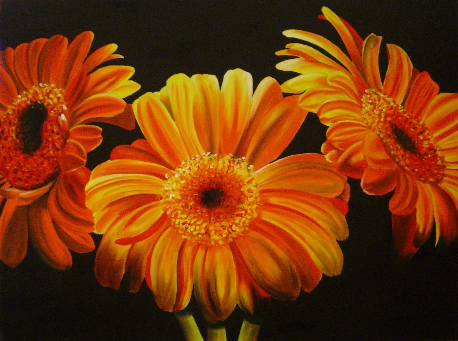 Flower For Respect: Orange Gerberas