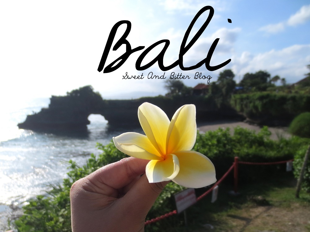 To Promote the tourism development between Vietnam and Bali (Indonesia)
