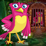 G4k Rosy Bird Rescue Game