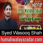 https://www.humaliwalyazadar.com/2018/09/syed-wasooq-shah-nohay-2019.html