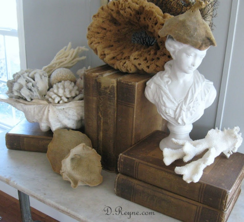 Coastal collection dispaly with vintage books and seashells