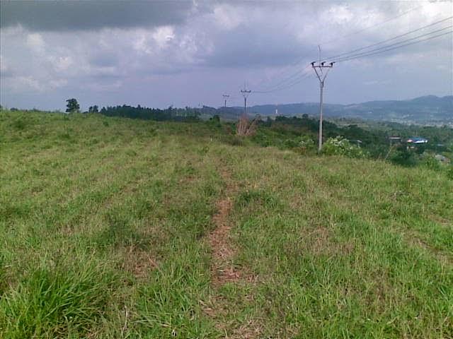 Foto(5381) Di Jual Tanah Murah 96 Ha Lokasi Kawasan Puncak Jual tanah di cipanas jual tanah di puncak