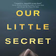 Book Review: Our Little Secret by Roz Nay