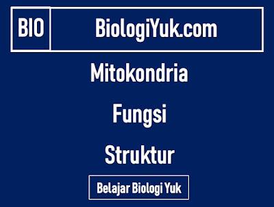 Mitokondria: Fungsi dan Struktur Terlengkap