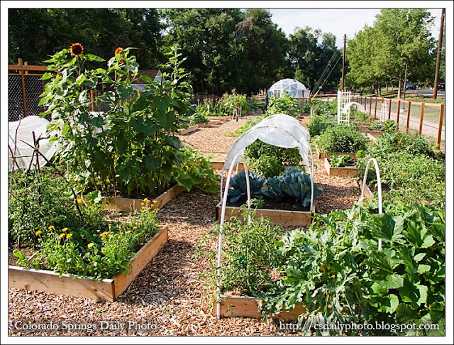 Colorado Springs Daily Photo: Mid Shooks Run Community Garden