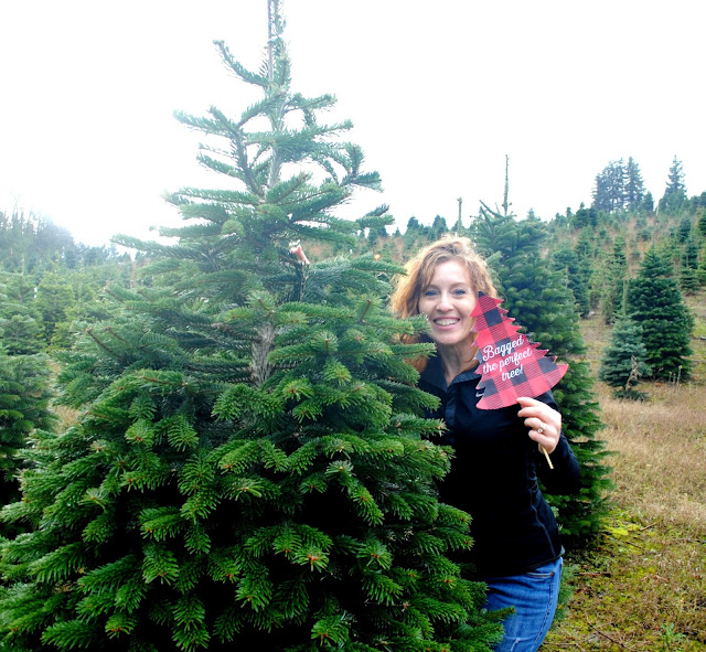 Found the perfect tree at Sleighbells Tree Farm in Sherwood, Oregon at FizzyParty.com