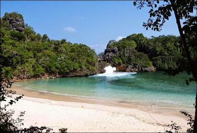 objek wisata Pulau Sempu di Malang