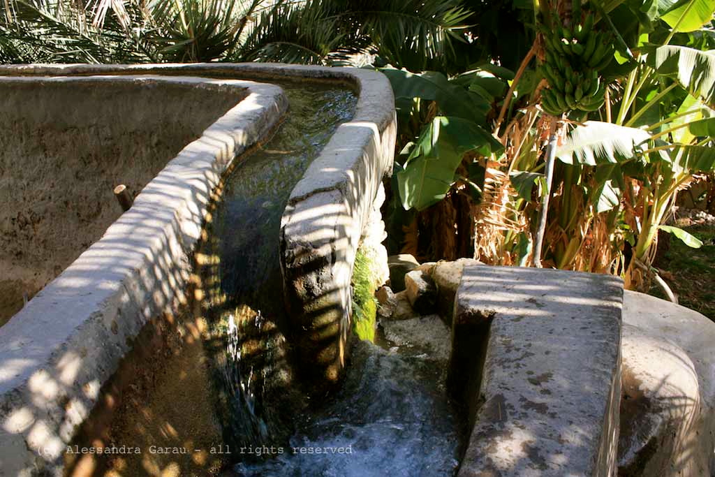 Ultimissime dall'orto: Saie, falaj e pozzi: riserve idriche in giardino