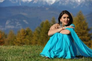hanshika motwani  saree Pictures 012.jpg