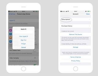Cara membatalkan langganan App Store di iPhone atau iPad, inilah caranya