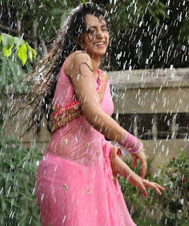 Trisha-wet-saree