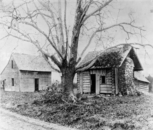 Bennett's Farm picture 1