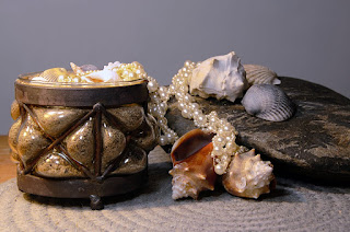 still life of shells and pearls