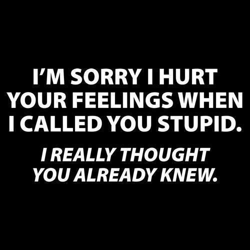 Stupid Quotes: I'm Sorry I Hurt Your Feelings When I Called You Stupid