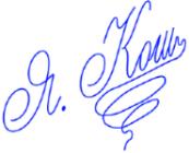 Яна подпись