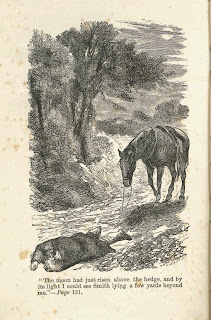 A full-page illustration of a horse and a fallen rider.