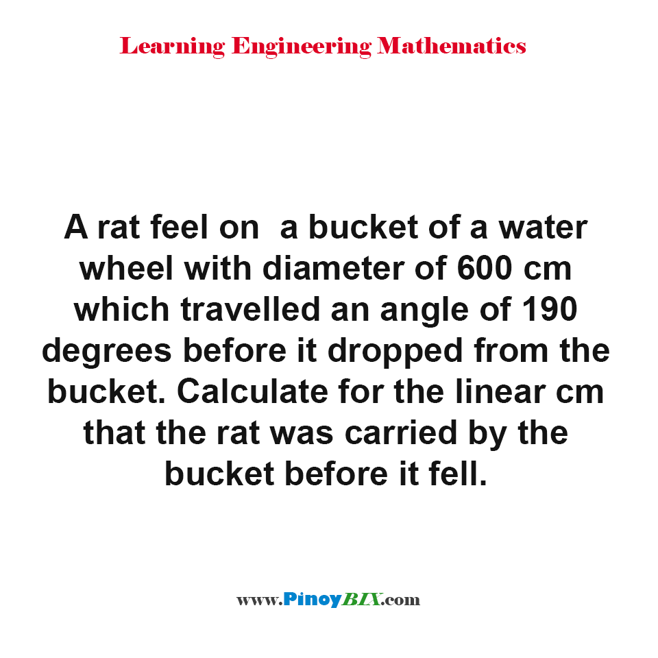 Calculate for the linear cm that the rat was carried by the bucket before it fell.