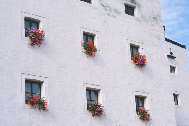 Austrian house hanging flower baskets