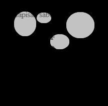 tegangan permukaan