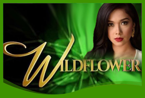 Wildflower January 19, 2018 Full Episode Replay | pinoytv