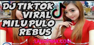 Koleksi Lagu Dj Tik Tok Milu Pulo Rebus Remix mp3 Terbaru 2018 | Laguenak.com