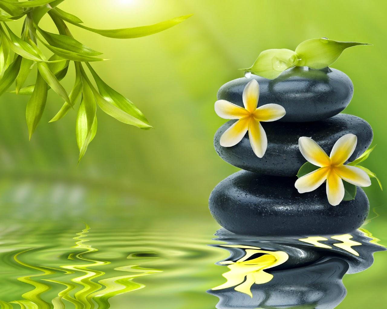 Zen Relaxation Backgrounds: Peaceful Zen