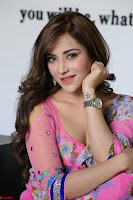 Actress Angela Krislinzki in Pink Saree Blouse Exclusive Pics March 2017 ~  013.JPG