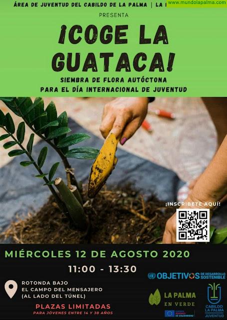 """El Cabildo de La Palma celebra el Día Mundial de la Juventud animando a """"coger la guataca"""""""