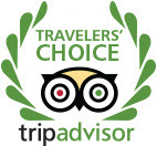 https://www.tripadvisor.com/Attraction_Review-g47776-d10517150-Reviews-Tree_Creations_in_Geneseo-Geneseo_Finger_Lakes_New_York.html