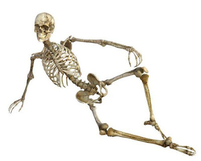 Jenis Organ Sistem Gerak Manusia (Tulang, Sendi, Otot)