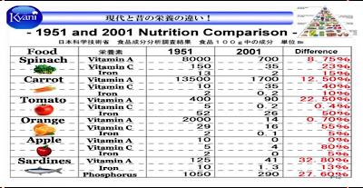 Gli alimenti essenziali per il corpo