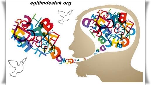 İngilizce Öğrenmenin Yöntemleri Nelerdir ?