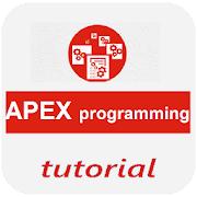 Apex Programming ebook