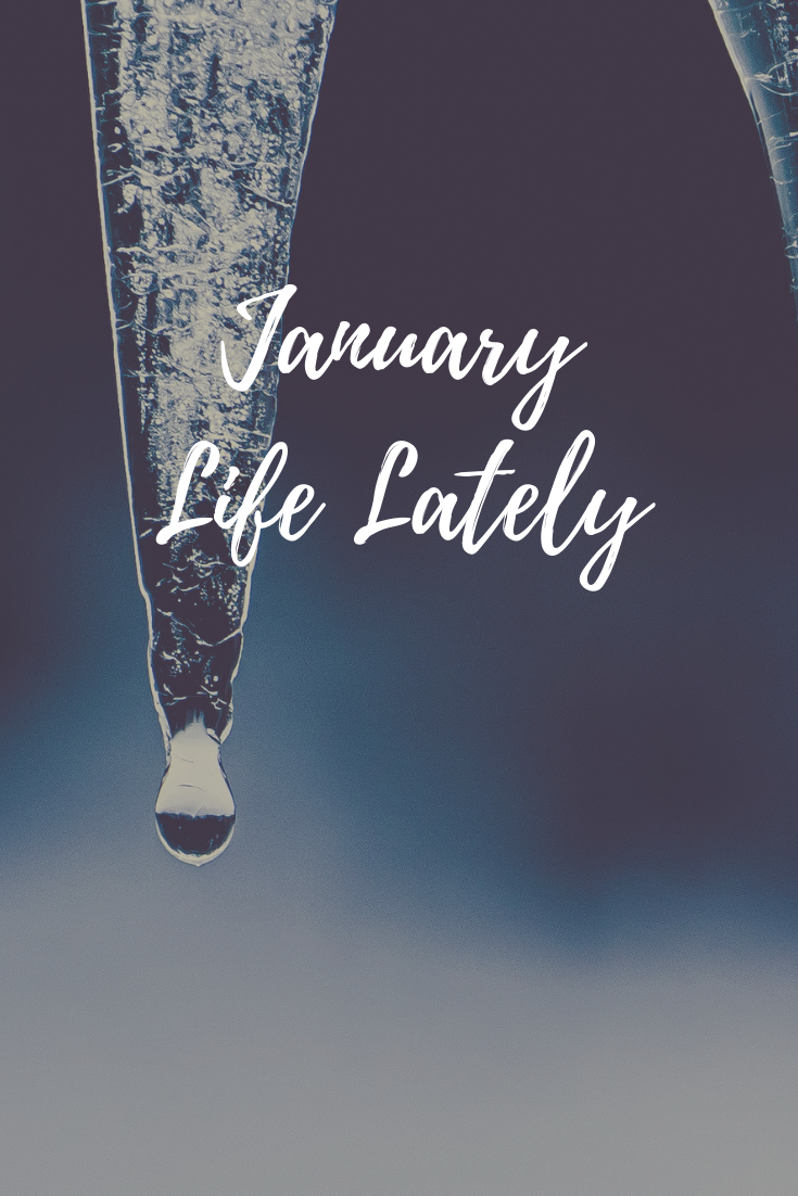 Life lately January