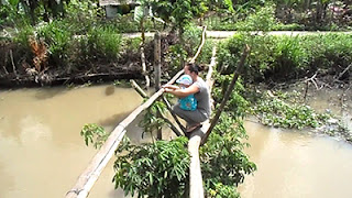 9. The Monkey Bridge, Vietnam