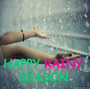 Happy Rain DP Images