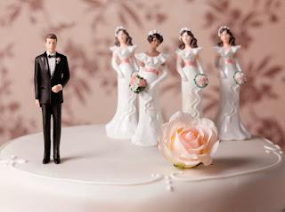 Historia de la poligamia