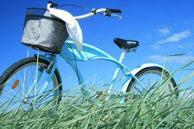 en turkos cykel i ett grönt fält med blå sommarhimmel