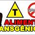 O que são alimentos transgênicos? Exemplos
