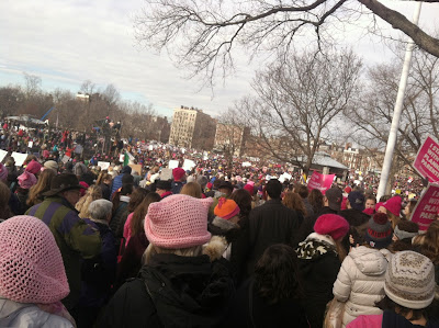 Pink Knit Pussy Hats as far as the eye can see at the Boston Women's March, Jan 21, 2017