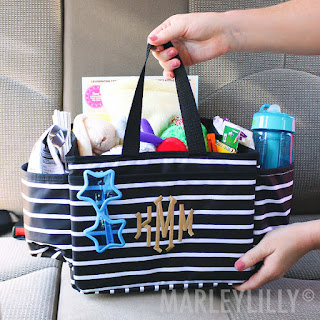 This is the perfect addition to your car that will keep it clean and organized!